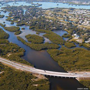 Florida Marsh photo by NOAA