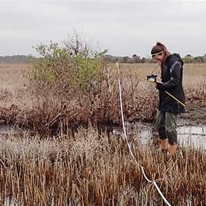 Michelle Shaffer measures changes in vegetation
